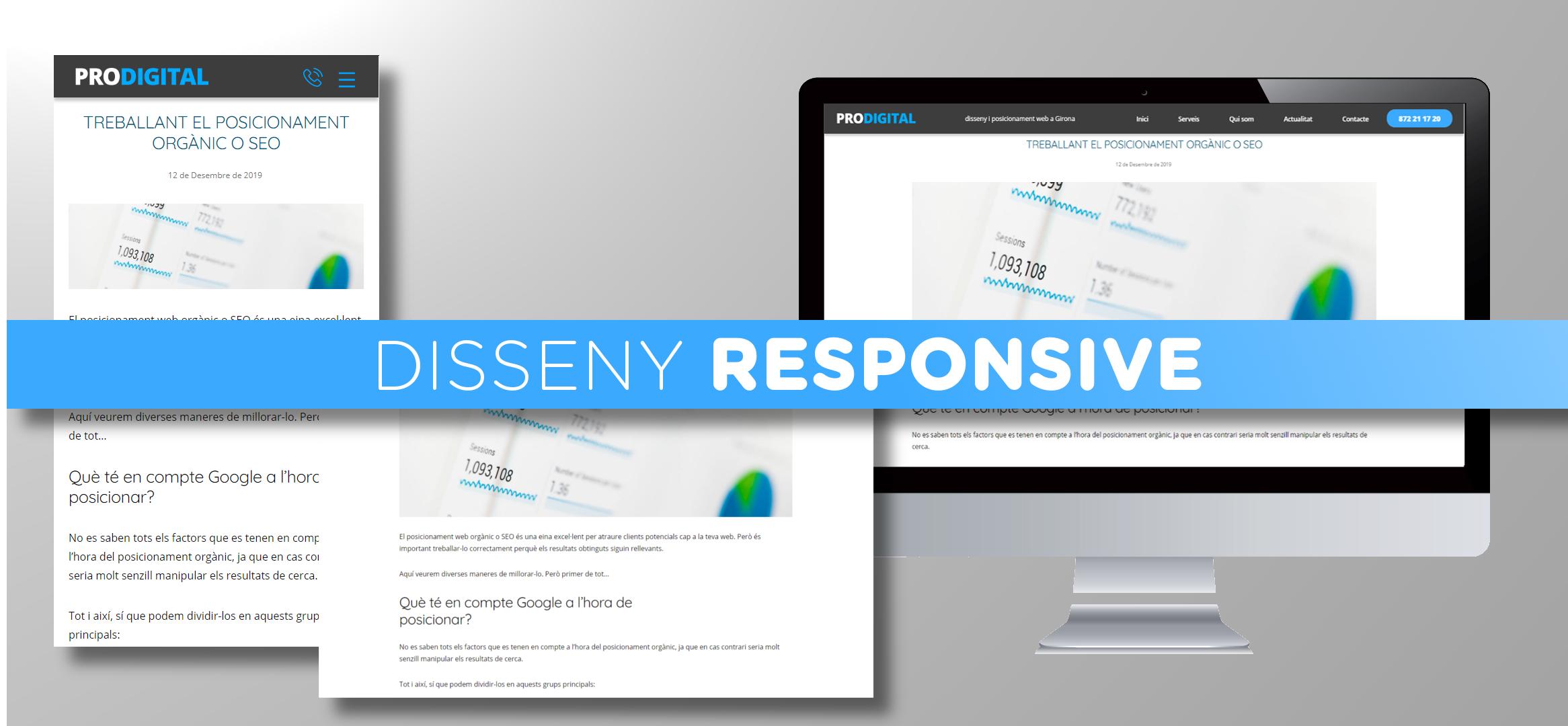 Diesseny web responsive