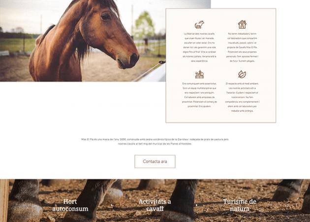 disseny web a la garrotxa